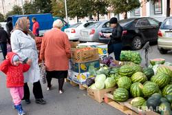 Пресс-конф Печериной об открытии овощной ярмарки, покупатели, арбузы, овощная ярмарка