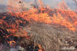 Пресс-конференция МЧС Курган, пожар, огонь, трава горит