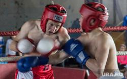 Клипарт. Челябинская область, бой, спорт, кикбоксинг