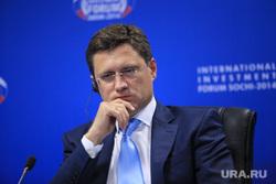 Форум Сочи -2014.  Круглый стол по ТЭК, портрет, новак александр