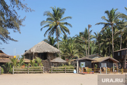 Клипарт. Индия. Гоа, пляж, курорт, пальмы, отдых, туризм
