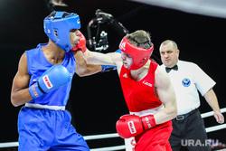 Международная встреча по боксу