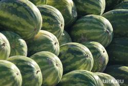 Клипарт. ЯНАО , фрукты, арбузы, уличная торговля, рынок