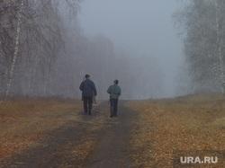 Клипарт по теме Охота. Челябинск, лес, охотник, туман