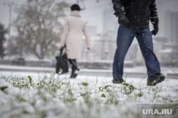 Снегопад. Екатеринбург, снег, холод, зима, трава, осень