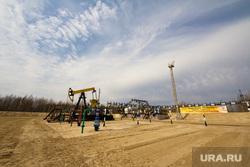 Роснефть. Нижневартовск , роснефть, качалка, куст, добыча нефти