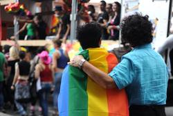 Открытая лицензия 09.06.2015. Геи., геи, гейпарад