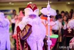 Новогодняя ёлка главы города. Сургут, дед мороз, новый год