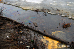 Река Тобол-нефтяное пятно. Курган, нефтяное пятно, экология