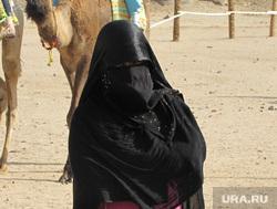 Рабыня секс с верблюдом