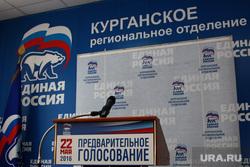 Дебаты Единая Россия Курган, предварительное голосование, единая россия