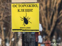 Северное кладбище и могила Александра Хабарова. Екатеринбург, осторожно клещи, табличка