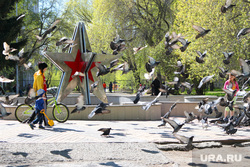 Мусор в мешках Курган, голуби, парк победы, звезда