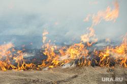 Лесные пожары. Учения МЧС. Челябинск, трава, огонь