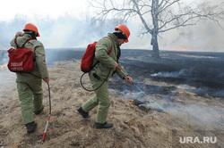 Лесные пожары. Учения МЧС. Челябинск, пожар, пожарные