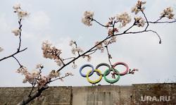 Открытая лицензия от 27.07.2016 .  , олимпийские кольца, олимпиада