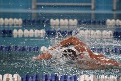 Спортивные клубы Екатеринбурга, бассейн, плавание, спорт