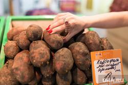 Юлия Михалкова на областном рынке на Громова г. Екатеринбург, картошка, картофель