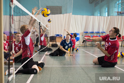 Тренировка паралимпийцев по волейболу. ДИВС. Екатеринбург, тренировка, паралимпиада, волейбольный клуб родник, волейбол сидя