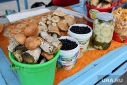 Рейд по микрорыну Курган, уличная торговля, микрорынок, грибы-ягоды