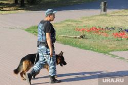 Митинг многодетных Челябинск, собака, кинолог, полиция, кинологическая служба