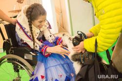 ЮграТур 2014. Ханты-Мансийск, собака, инвалид-колясочник
