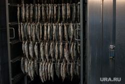 Эскурсия в цех Ямальских оленей, Ямал-продукта и молокозавод + Ямал-Ири, рыба