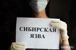 Клипарт по теме Сибирская язва. Екатеринбург, сибирская язва