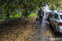 Осень. Тюмень, пенсионеры, осень