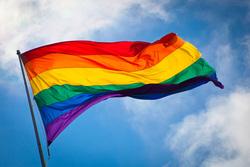 Открытая лицензия 09.06.2015. Геи., геи, флаг