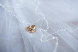 Открытая лицензия 15.07.2015. Свадьба., свадьба, кольца