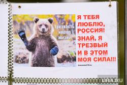 Молебен за трезвость. Челябинск., трезвый медведь