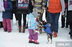 Митинг против живодеров Челябинск, собака в комбинзоне, митинг против живодеров