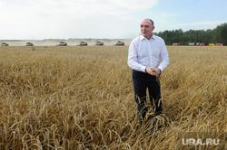Дубровский и пшеница Челябинск, поле, пшеница, урожай, дубровский борис