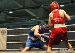 Финал чемпионата по боксу среди юниоров Курган, мишечкин константин