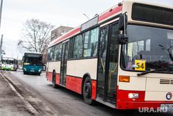 Городские автобусы. Тюмень, автобус