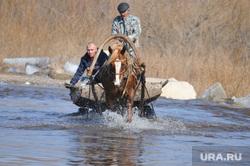 Паводок. Челябинская область, потоп, паводок, конная повозка, телега, наводнение