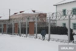 Клипарт. ЯНАО , тюрьма, исправительная колония, харп