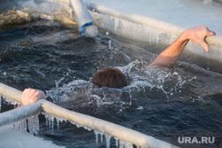 Крещенские купания. Сургут, крещение