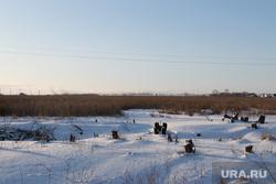 Сжигание деревьев село Введенское  Курганская область, пни, земли сельхозназначения