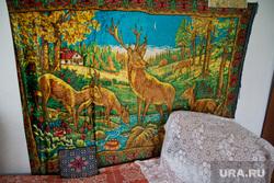 Деревня Сосновка. XMAO, олени, ковер