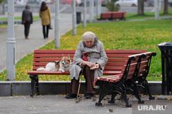 Клипарт. Екатеринбург, пенсионерка, прогулка, скамейка, выгул собак, бабушка