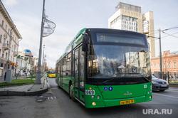 Новые белорусские автобусы на маршруте. Екатеринбург, автобус, общественный транспорт