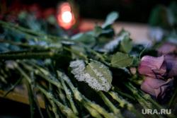 Мемориалы после крушения ТУ-154 в небе над Сочи. Концертный зал Александрова. Офис доктора Лизы. Москва, розы, мемориал, траур, цветы