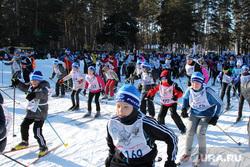 Лыжня России 2016 Курган, лыжня россии 2016, массовый забег