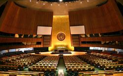 Открытая лицензия на 04.08.2015. ООН., оон, генеральная ассамблея