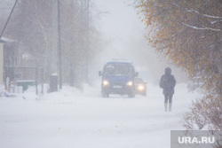 Деревяшки. Нижневартовск., зима, заморозки, метель, снегопад
