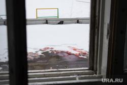 Самоубийство. Нижневартовск., кровь, самоубийство, вид из окна