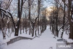 Харитоновский парк. Екатеринбург, аллея, харитоновский парк, зима
