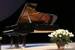 Презентация рояля Курган, филармония, фортепиано, букет роз, рояль, музыкальный инструмент, концерт, музыка